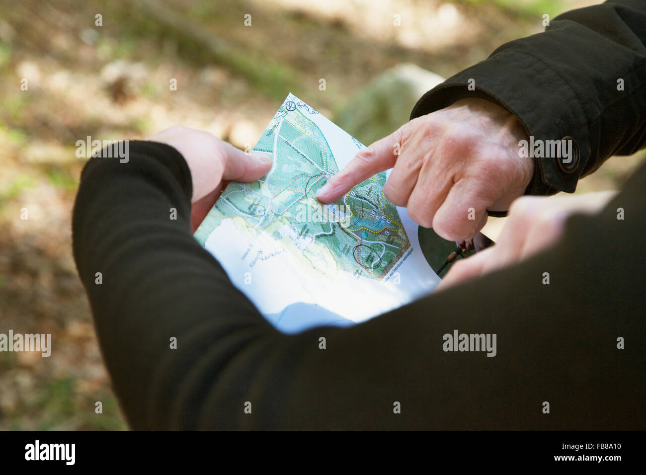 Sweden, Skane, Soderasen, Hand pointing at map in national park - Stock Image