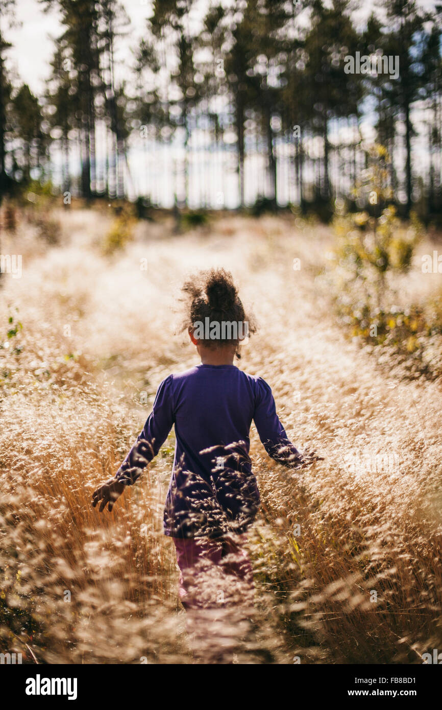 Sweden, Medelpad, Sundsvall, Juniskar, Rear view of girl (6-7) walking in field - Stock Image