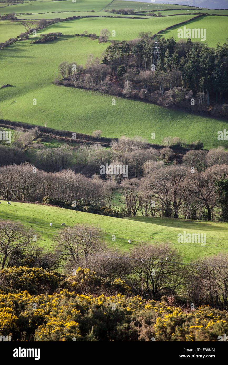 Valley in Colwyn Bay,Wales,United Kingdom - Stock Image