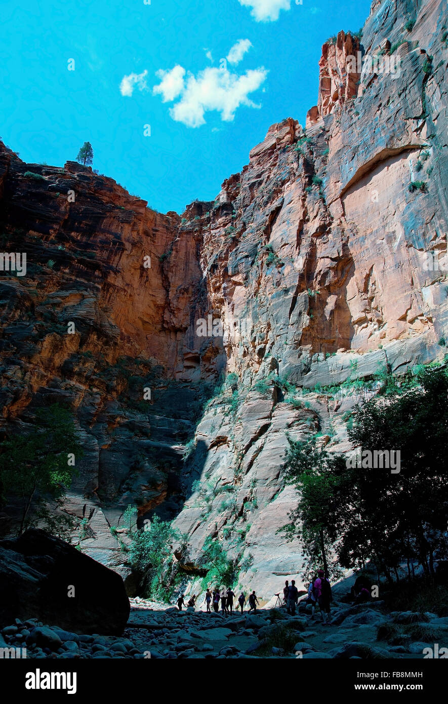 Big Rocks and Blue sky In Zion national park - Stock Image