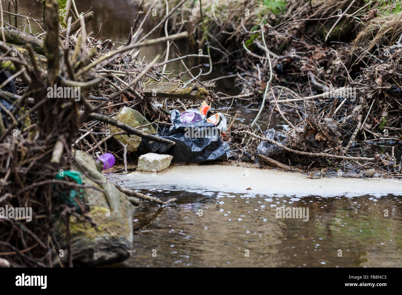 Plastic and Other Rubbish Polluting and Impeding the Flow of a Stream England UK - Stock Image