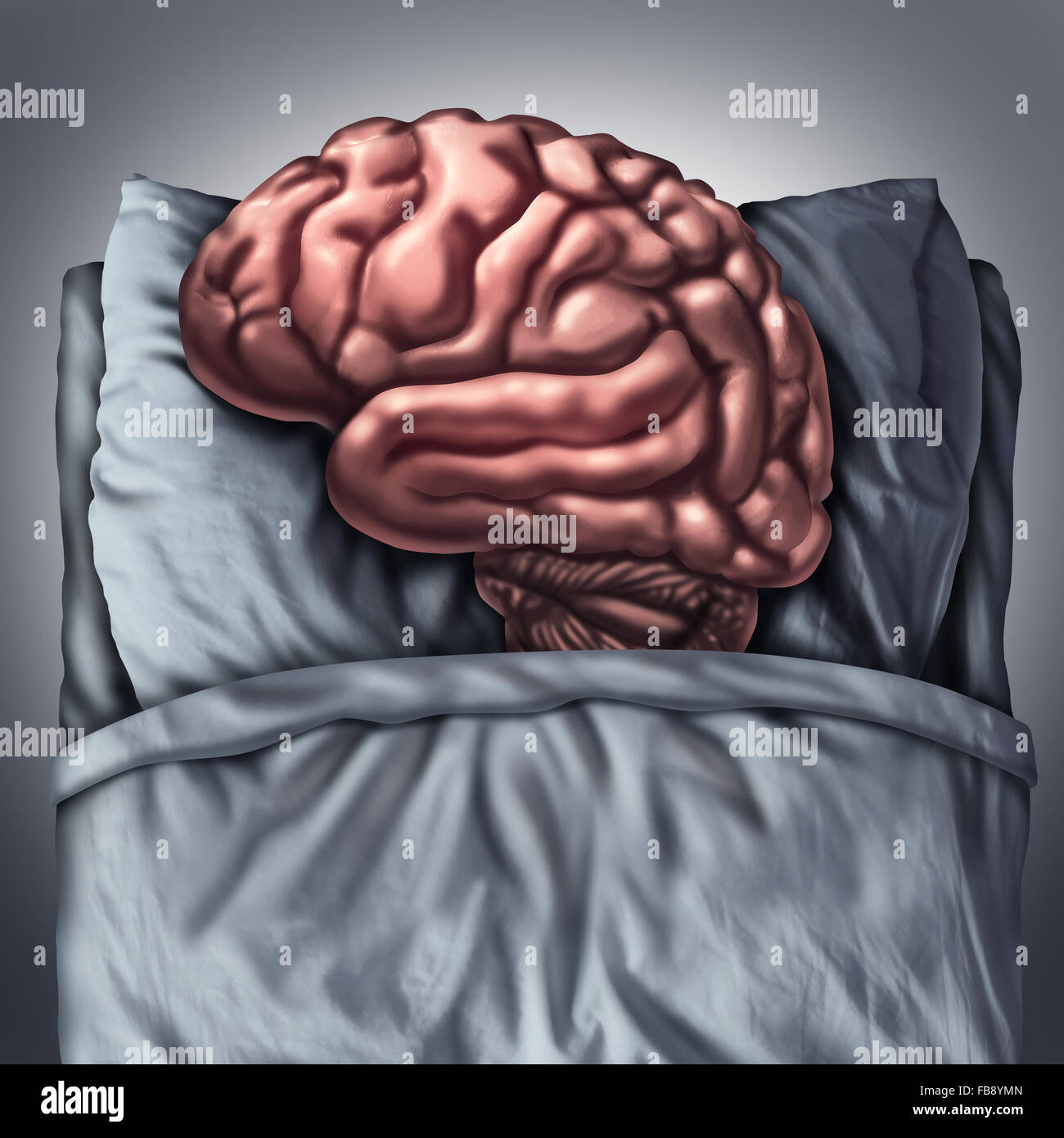 Brain sleep health care and medical concept for benefits of resting the thinking organ by sleeping on a pillow in - Stock Image