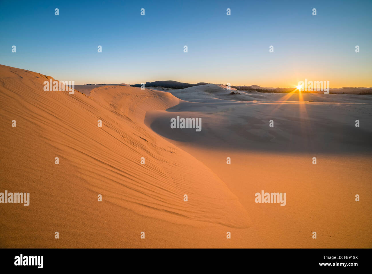 Sand dunes at Umpqua Dunes, Oregon Dunes National Recreation Area, Oregon Coast. - Stock Image