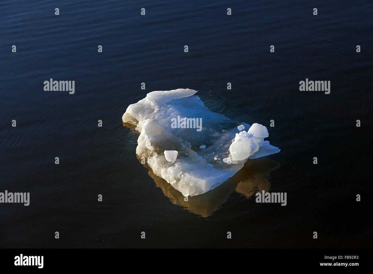Melting ice floe drifting in Polar ocean - Stock Image
