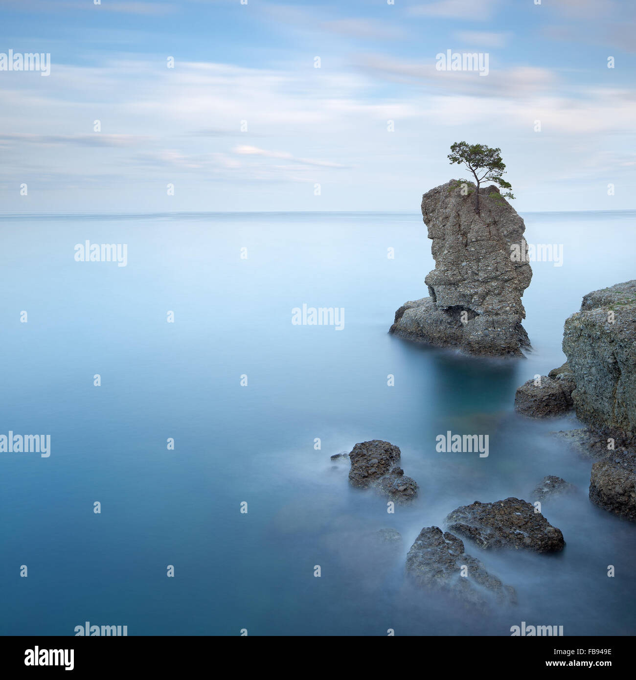 Portofino natural regional park. Lonely pine tree rock and coastal cliff beach. Long exposure photography. Liguria, - Stock Image