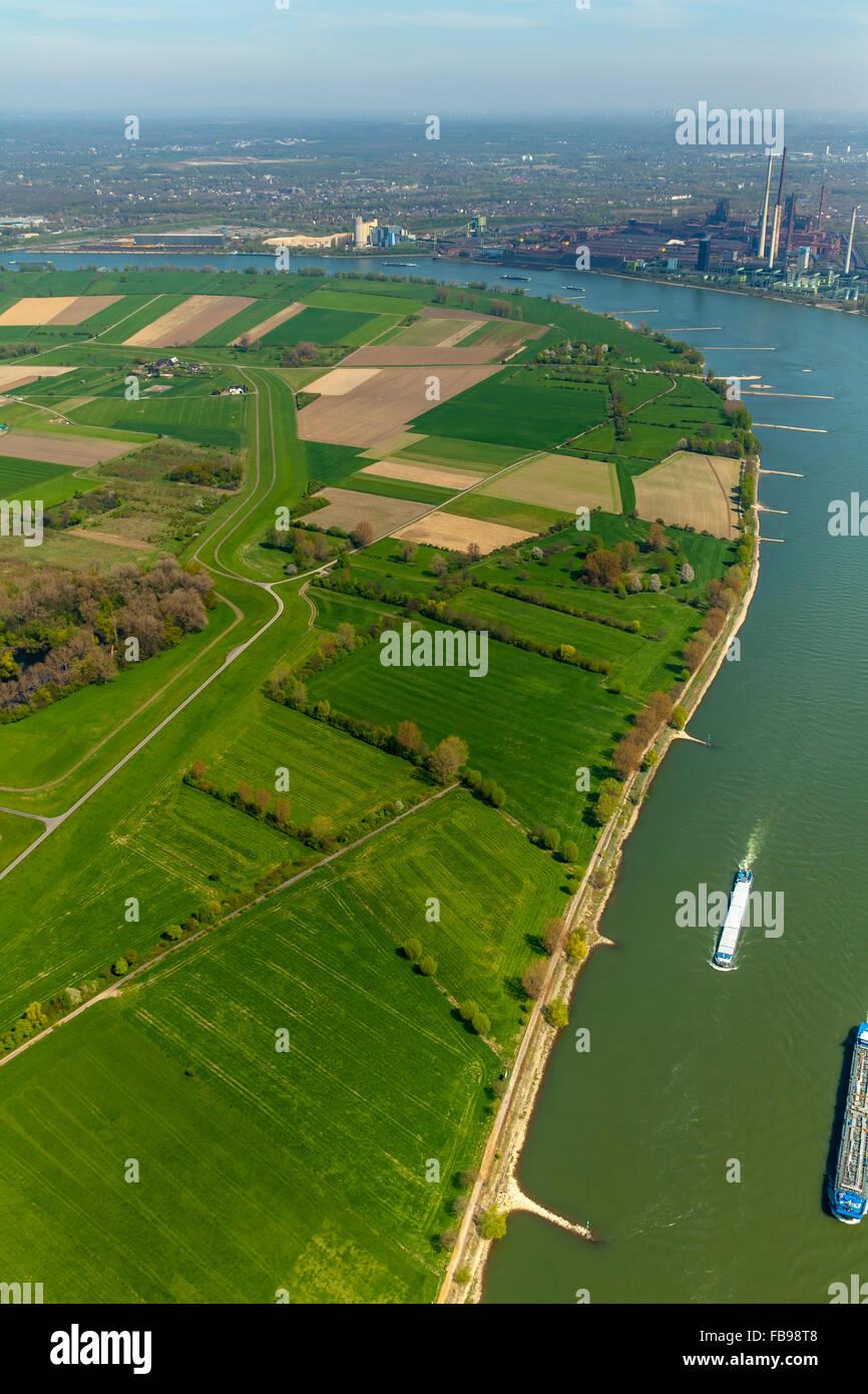 Aerial view, Rheinauhafen bins Feld with the bins Straße and Binsheim, behind the bins Heimer Rheindamm, flood protection, Stock Photo