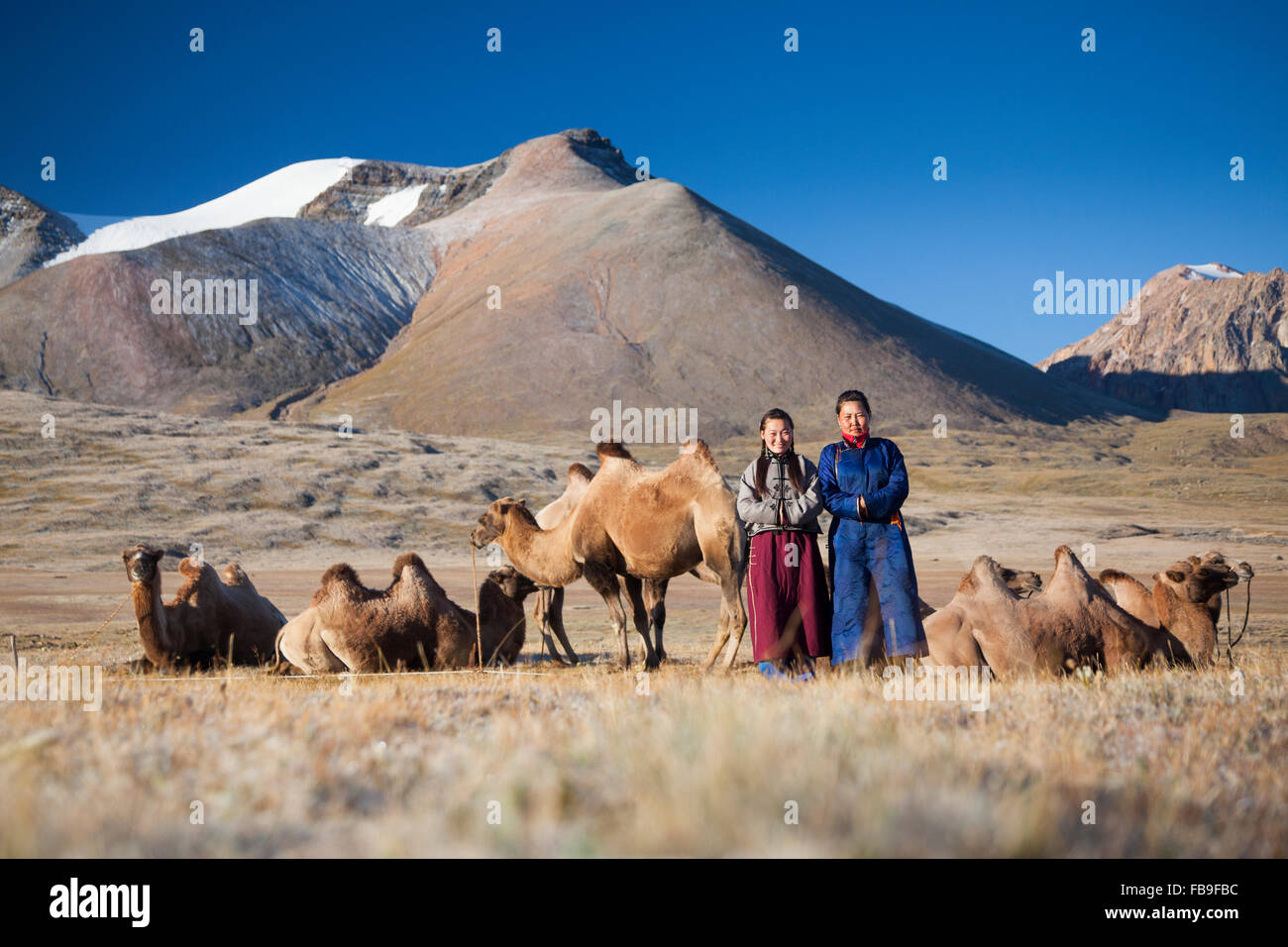 Trek guides pose amongst pack camels on a frosty morning in the remote Kharkhiraa Turgen National Park in far-western - Stock Image