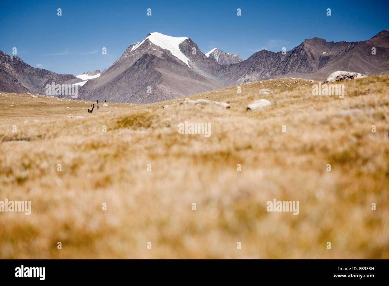 Hikers in the distance in Kharkhiraa Turgen National Park in remote far-western Mongolia. - Stock Image