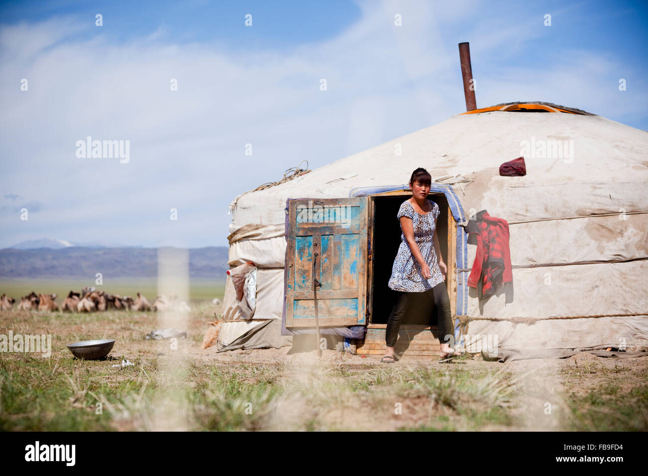 Girl emerges from nomad family ger, Mongolia. - Stock Image