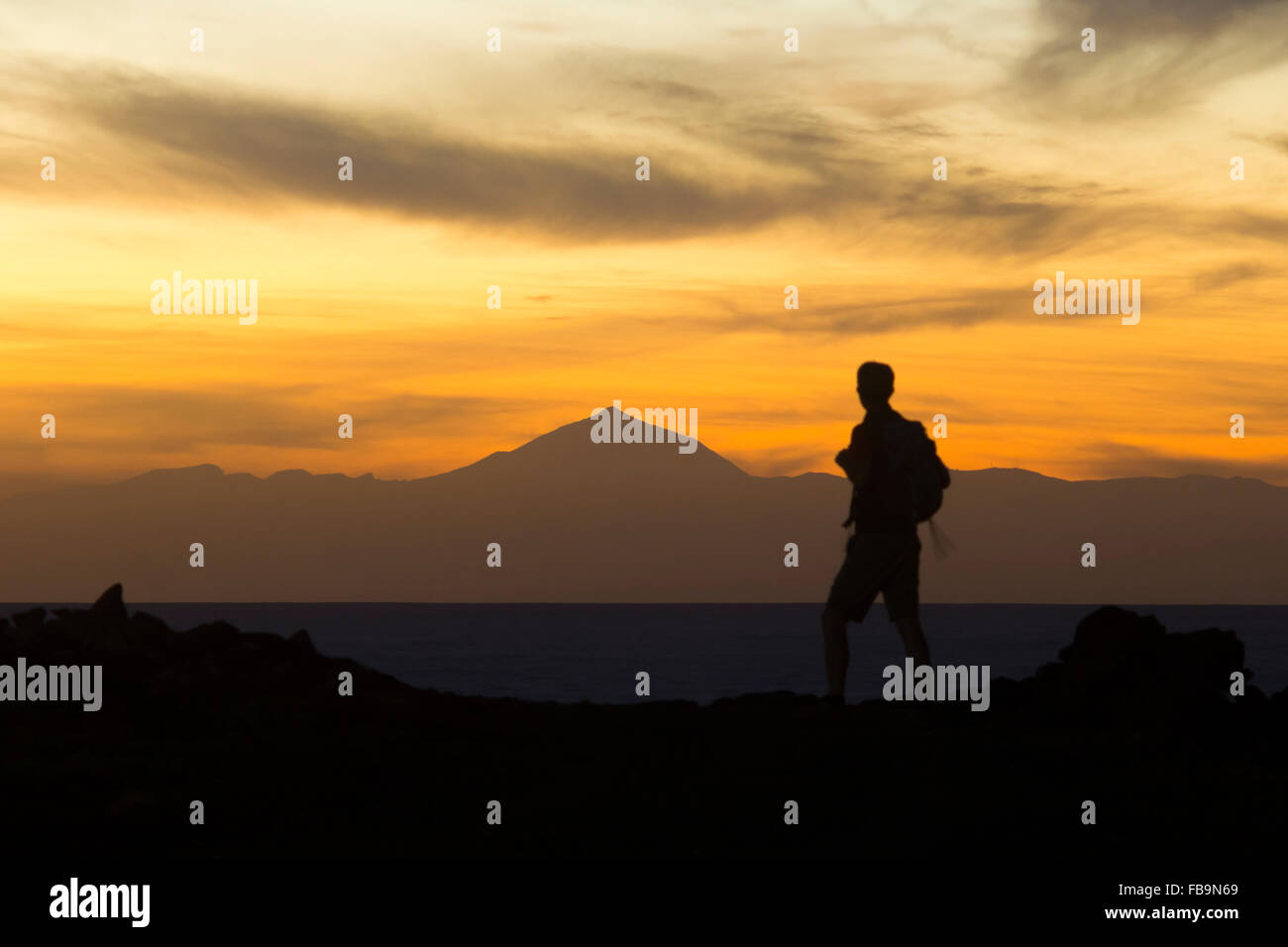 Las Palmas, Gran Canaria, Canary Islands, Spain. 12th January, 2016. Weather: Hiker on the rugged north coast of - Stock Image