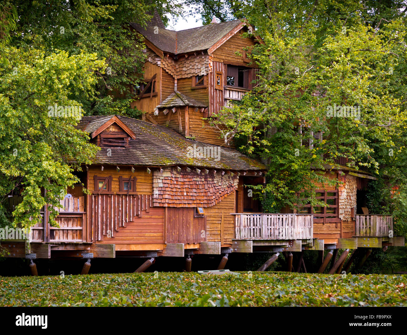 The Wooden Treehouse at Alnwick Gardens in Northumberland England UK designed by Jacques and Peter Wirtz - Stock Image