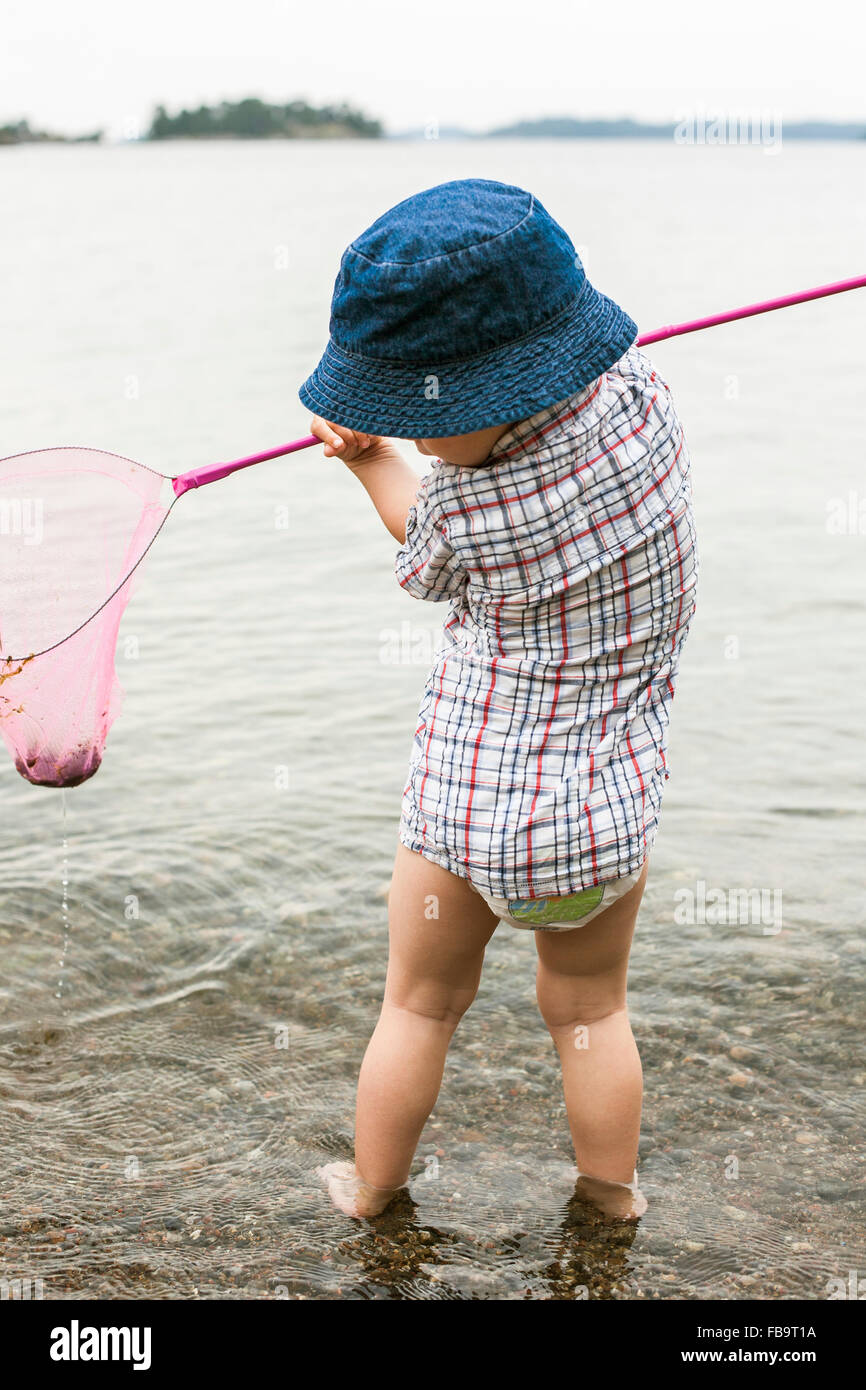 Sweden, Sodermanland, Stockholm Archipelago, Musko, Boy (2-3) standing in water with fishing scoop - Stock Image