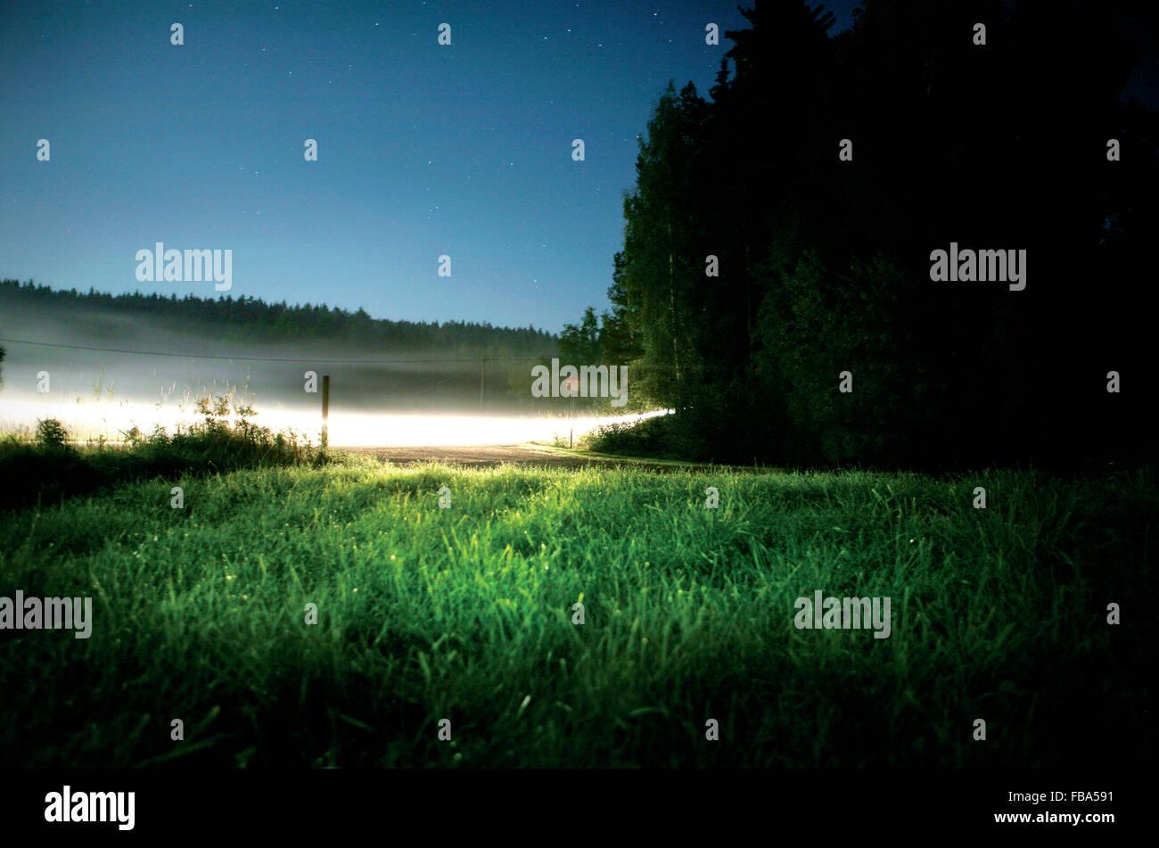 Sweden, Ostergotland, Grassy glade at night - Stock Image