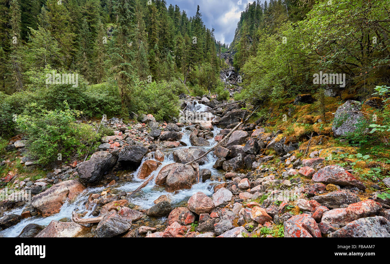 Mountain stream running in the narrow forest gorge. Eastern Siberia - Stock Image
