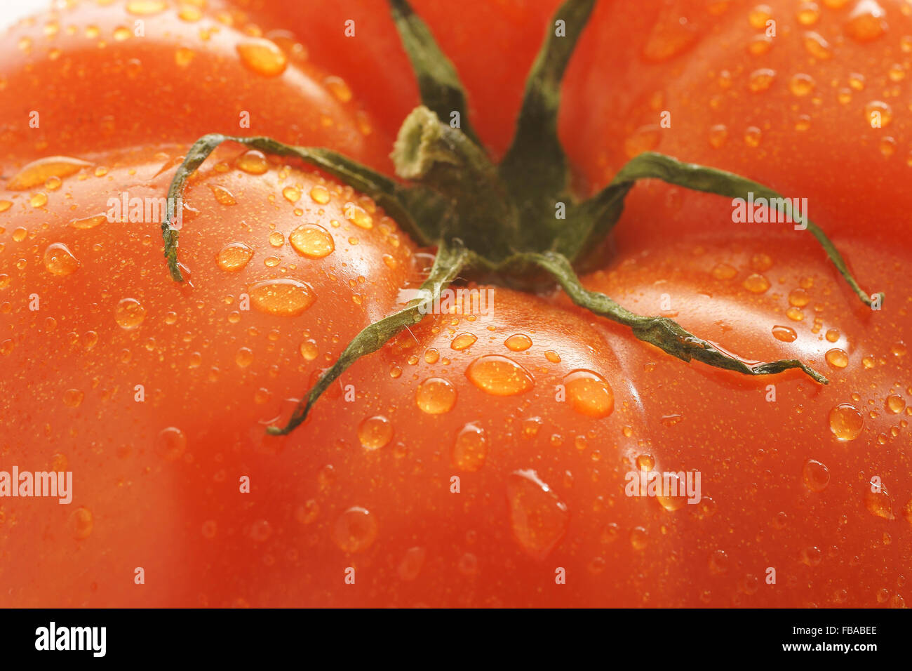 Fresh and plump beefsteak tomato - Stock Image