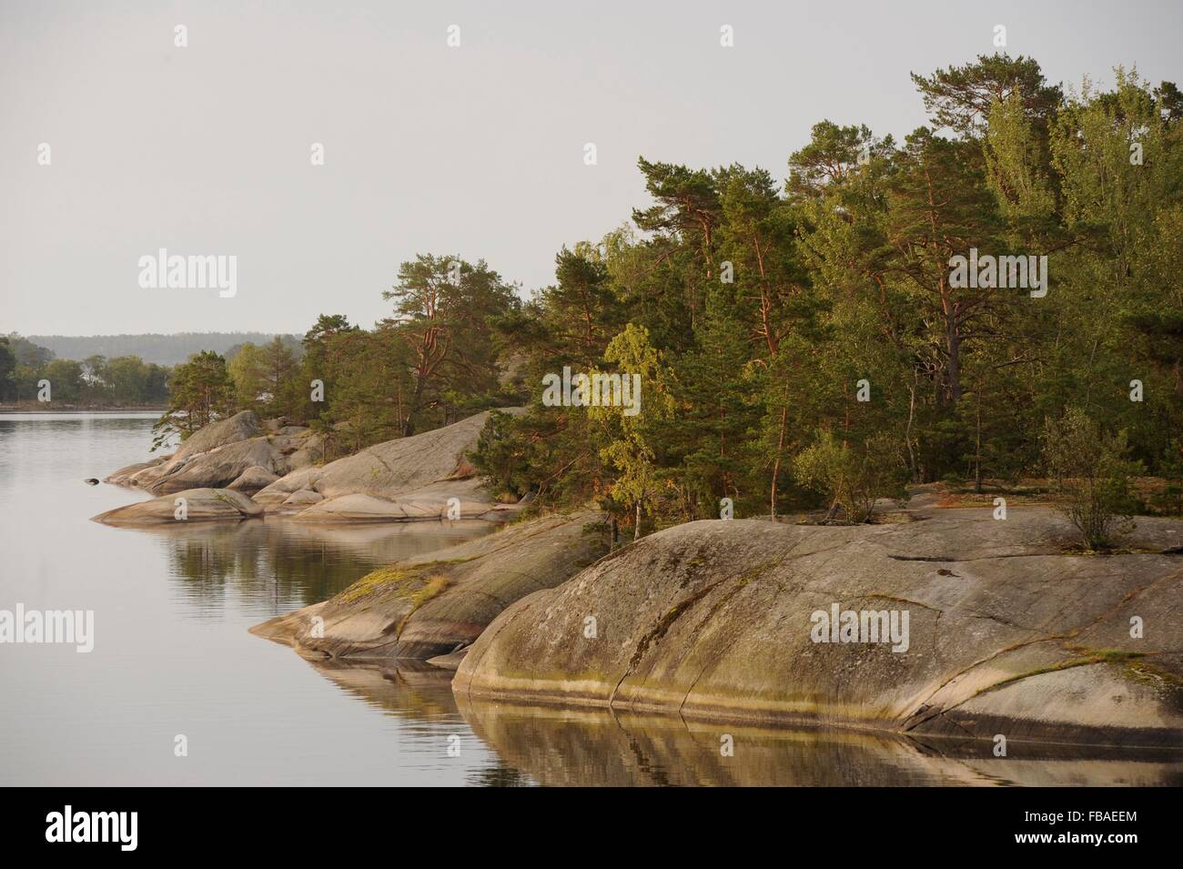 coast of the Stockholm Archipelago, Sweden - Stock Image