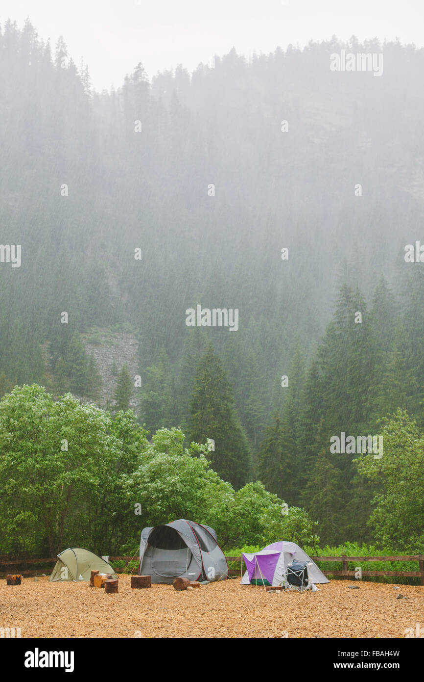 Switzerland, Ausserferrera, Three tents set up at campsite at foot of misty, wooded hill - Stock Image