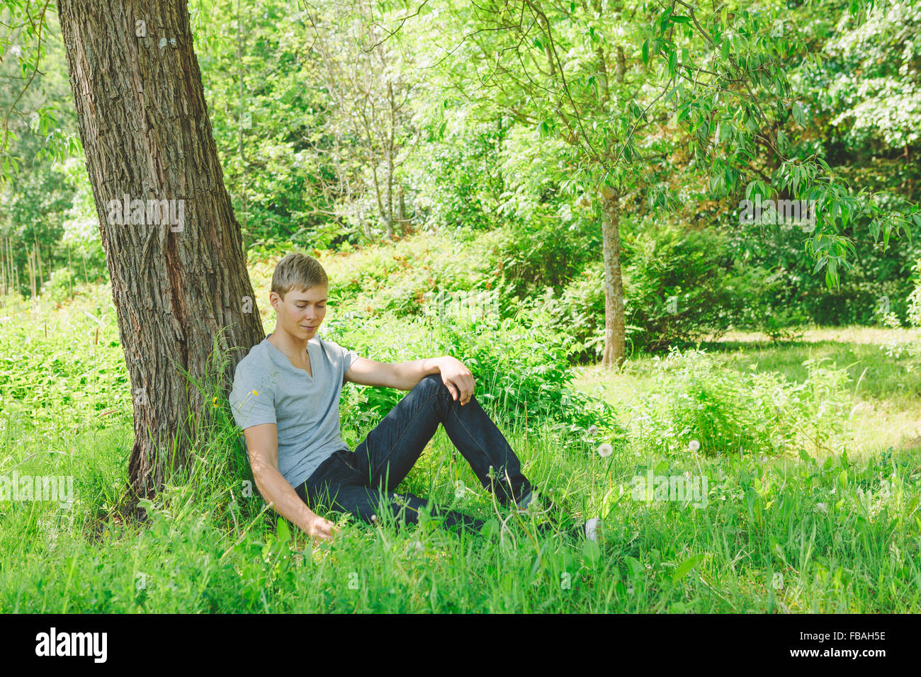 Finland, Helsinki, Aggelby, Young man sitting in grass under tree - Stock Image
