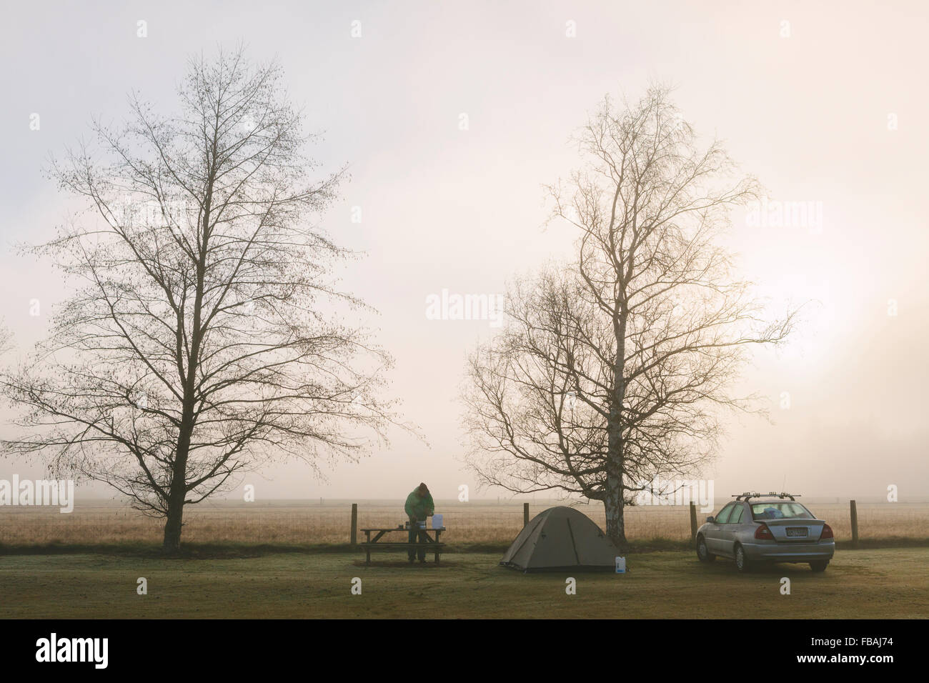 New Zealand, Springfield, Campsite on edge of field with two bare trees, set-up tent, parked car & man standing - Stock Image