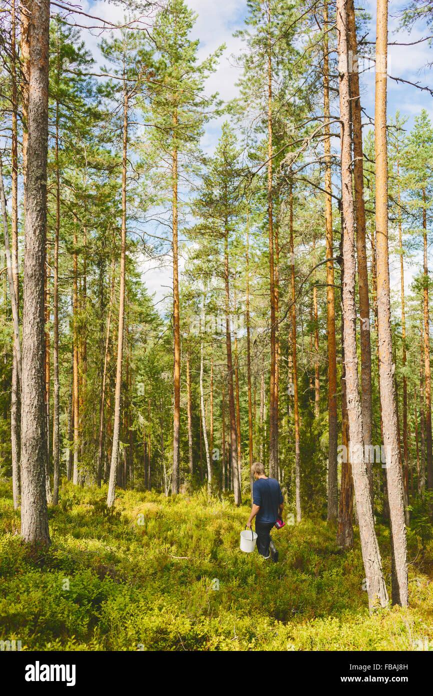 Finland, Keski-Suomi, Jyvaskyla, Man hiking in pine forest Stock Photo