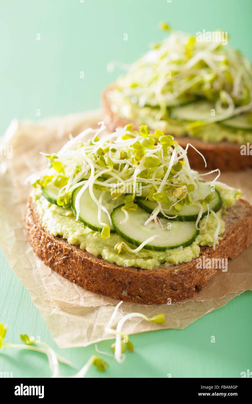 healthy avocado toast with cucumber radish sprouts - Stock Image