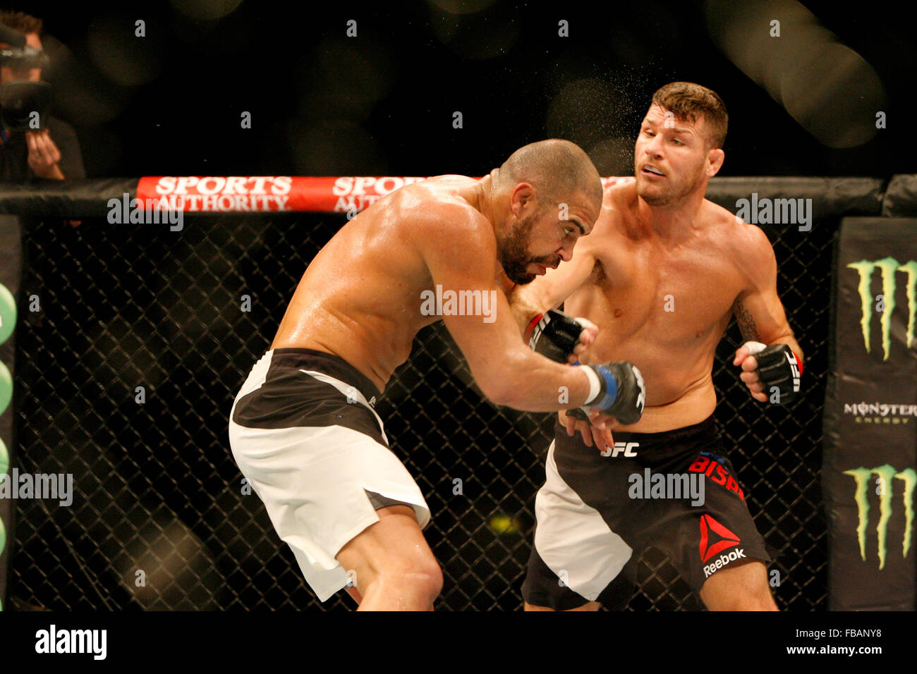 Michael Bisping defeats Thales...