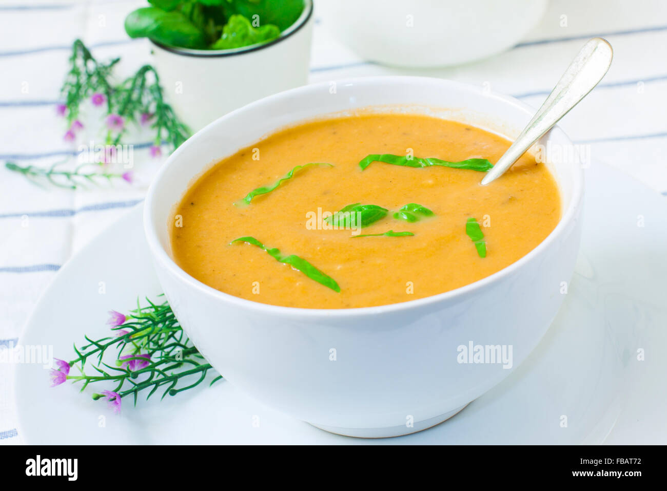 ceramic bowl with vegetables cream and basil - Stock Image