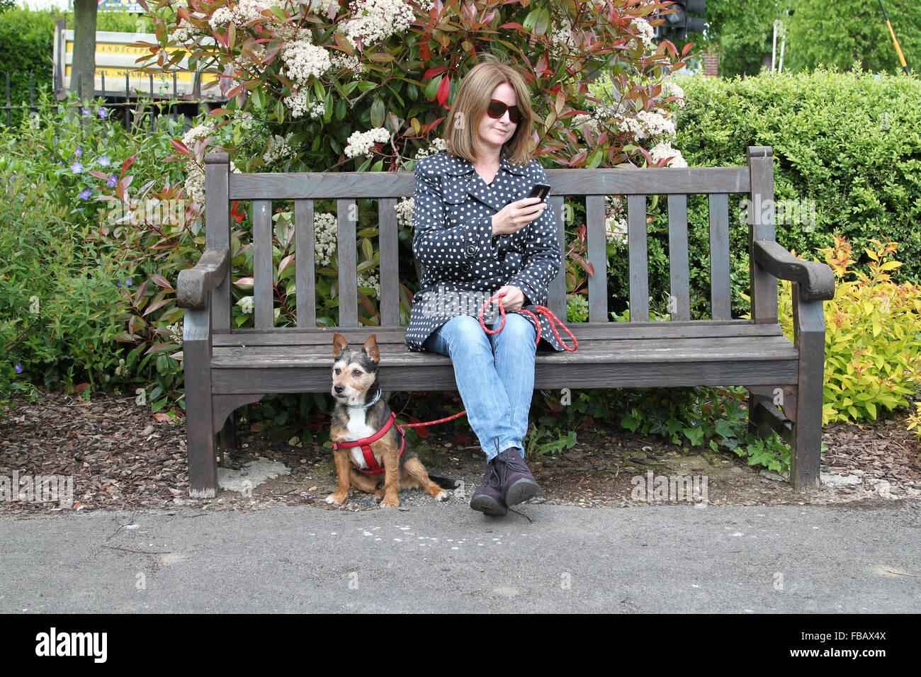 Pleasant Woman Sitting On Park Bench Looking At Mobile Phone With Frankydiablos Diy Chair Ideas Frankydiabloscom
