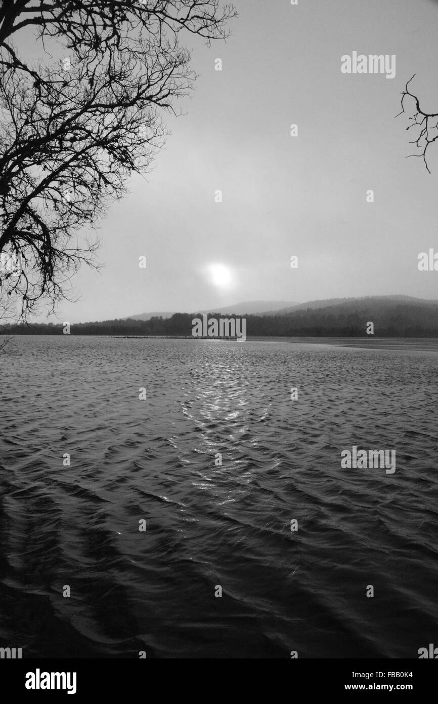 Rippled Water with Tree and hazy sun - Stock Image