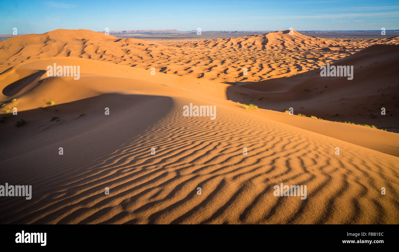 Saharan Dunes and ripples, Erg Chebbi Morocco - Stock Image