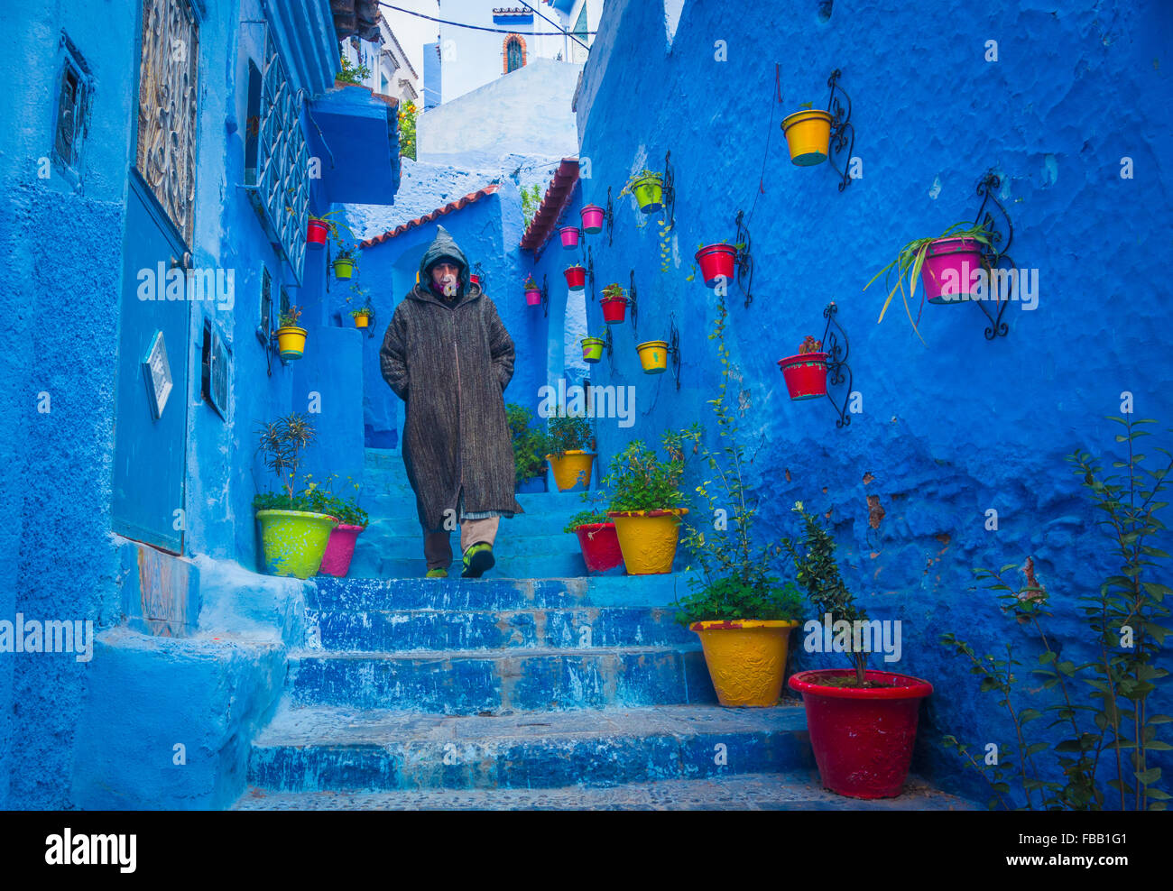 Chefchaouen flower pots, Morocco - Stock Image