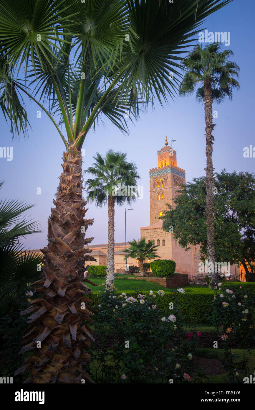 Koutoubia Mosque at dusk, Marrakech Morocco - Stock Image