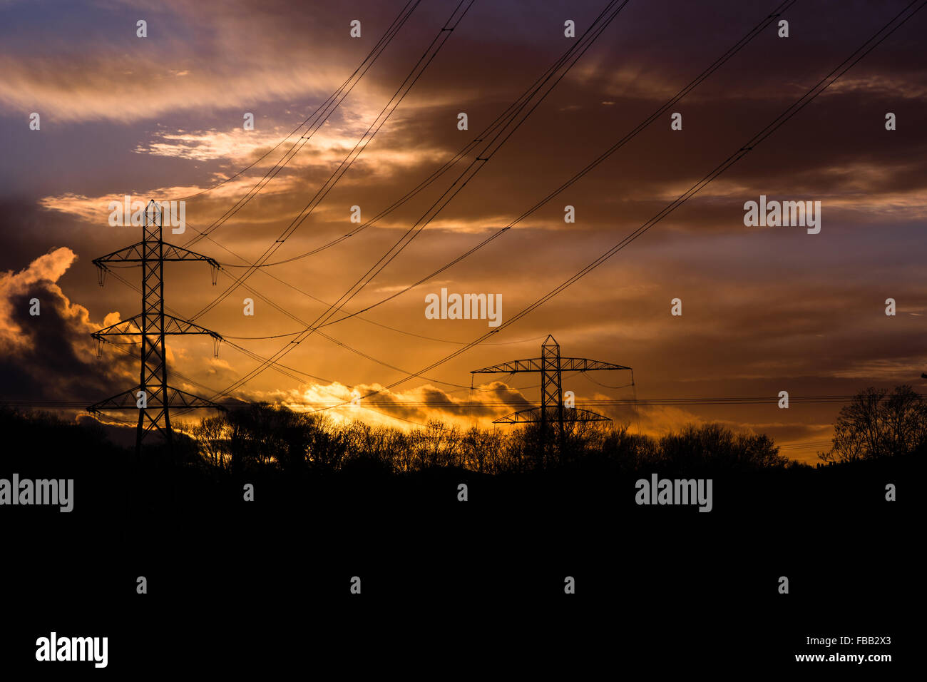 Industrial landscape with cables in front of sunset. Electricity cables and pylons are silhouetted in front of a - Stock Image