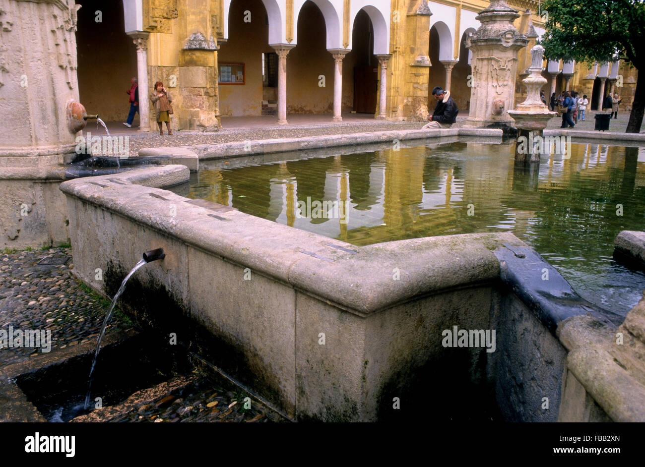 Cordoba.Andalusia. Spain: courtyard of los Naranjos, in the Mosque Cathedral Stock Photo