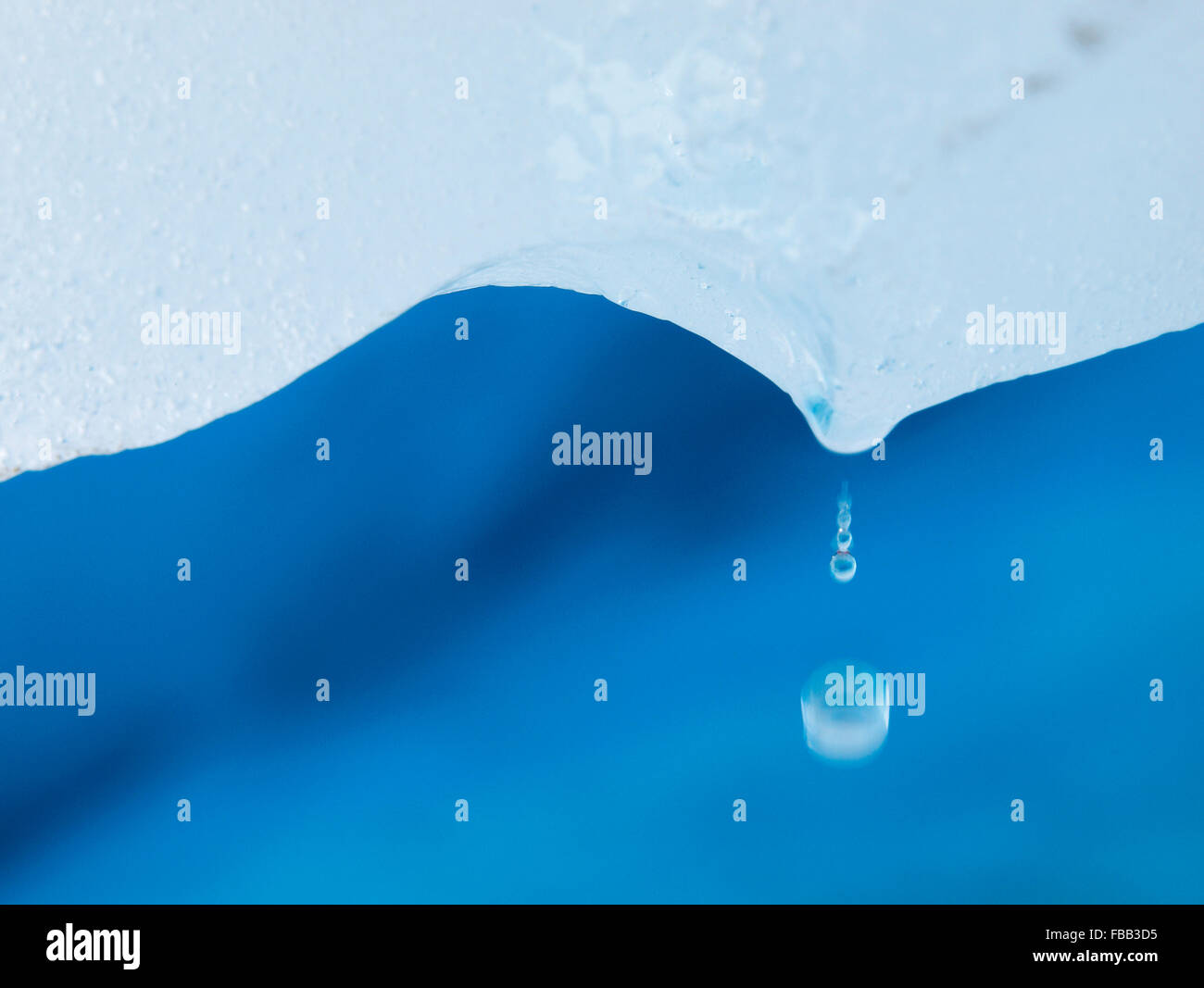 Water drops falling from glacial ice, Fox Glacier, New Zealand - Stock Image