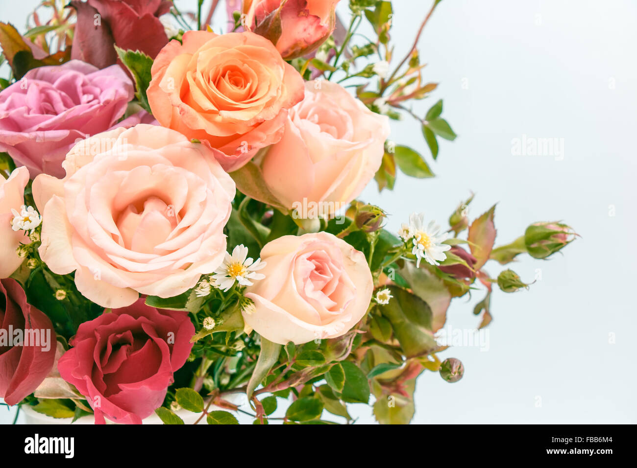 Vase of roses bouquet on white background set of beautiful flower vase of roses bouquet on white background set of beautiful flower valentine concept izmirmasajfo