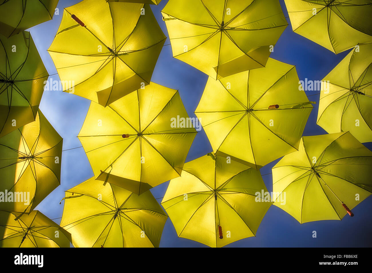 Low Angle View of Open Yellow Umbrellas Suspended in the Air - Stock Image