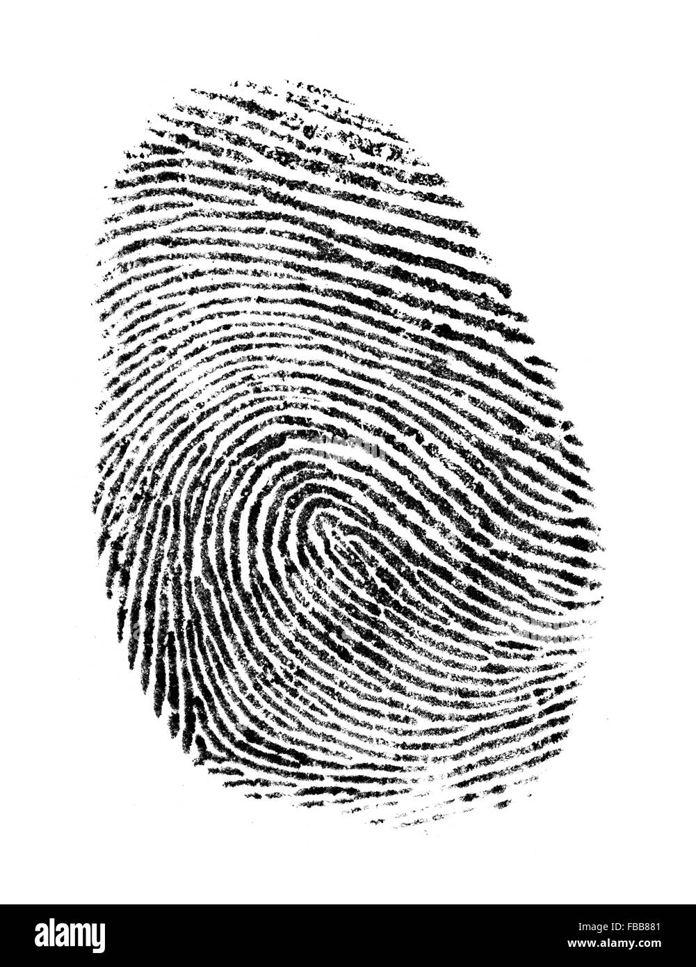 Black Ink Fingerprint Isolated on a White Background. - Stock Image