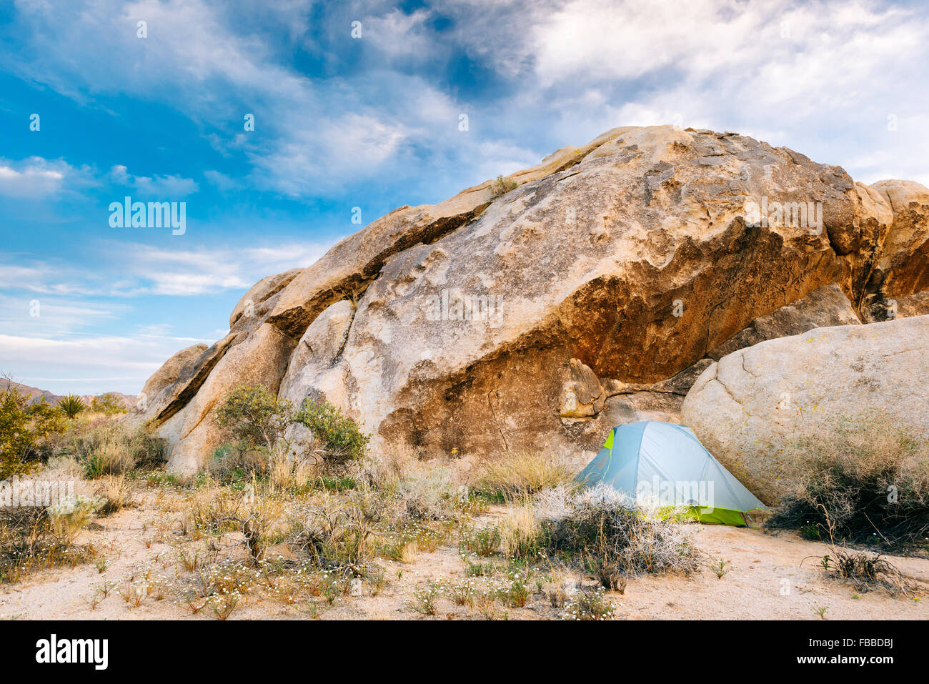 Camping along the Boy Scout Trail in the Wonderland of Rocks, Joshua Tree National Park, California - Stock Image