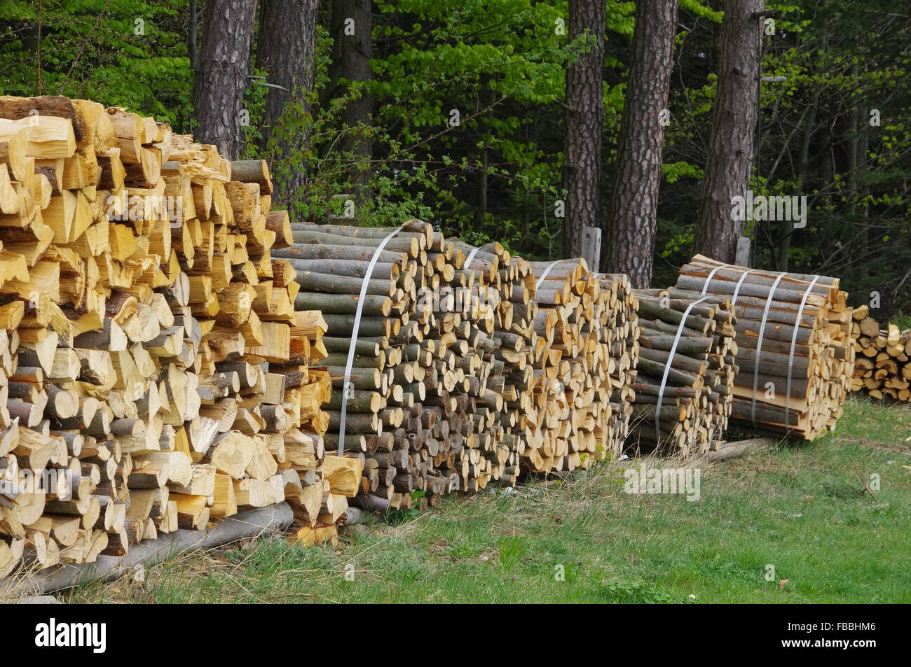 Holzstapel - stack of wood 48 Stock Photo