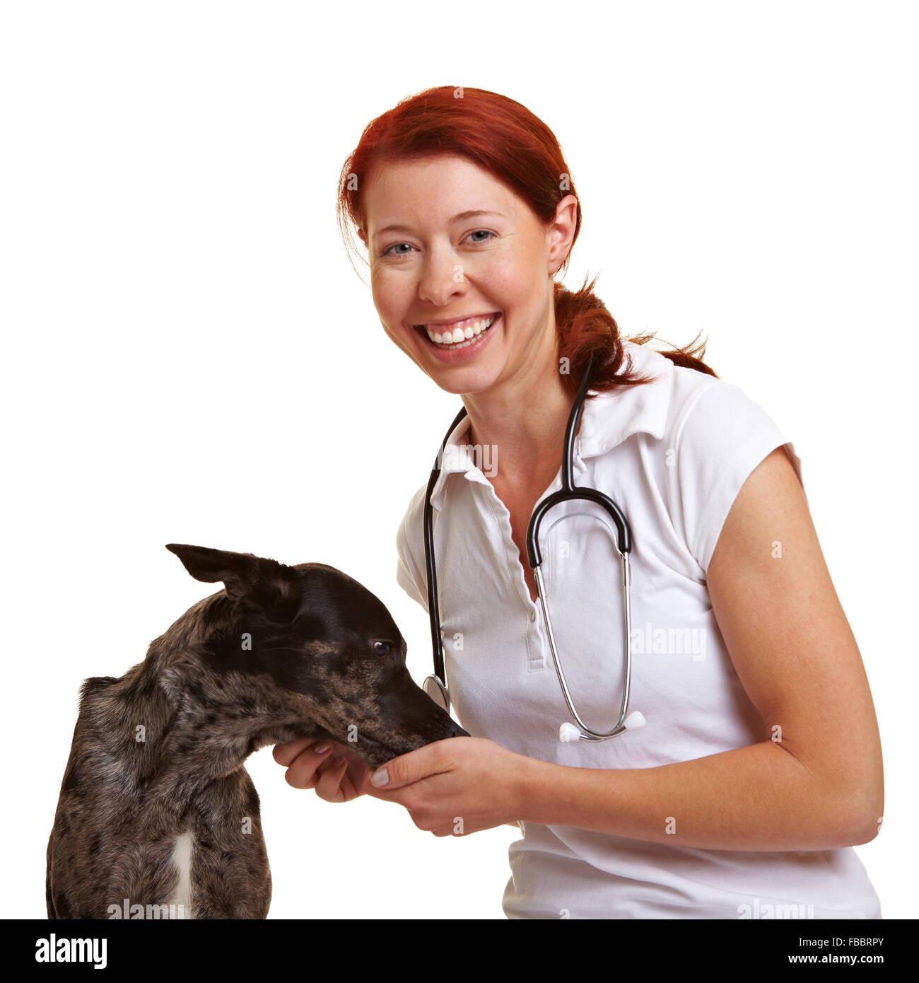 Happy smiling female vet feeding a dog - Stock Image