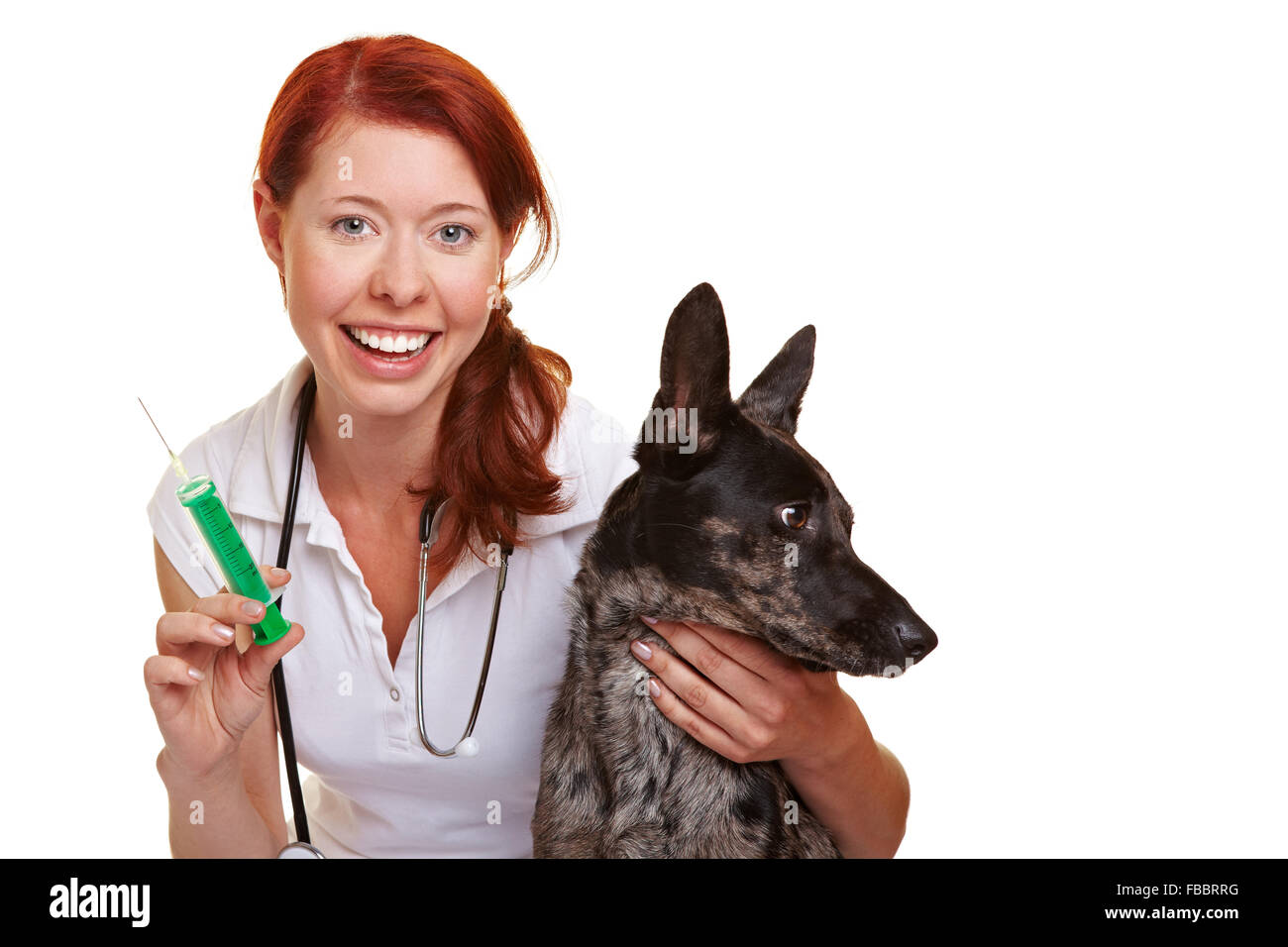 Happy female vet with a syringe and dog - Stock Image