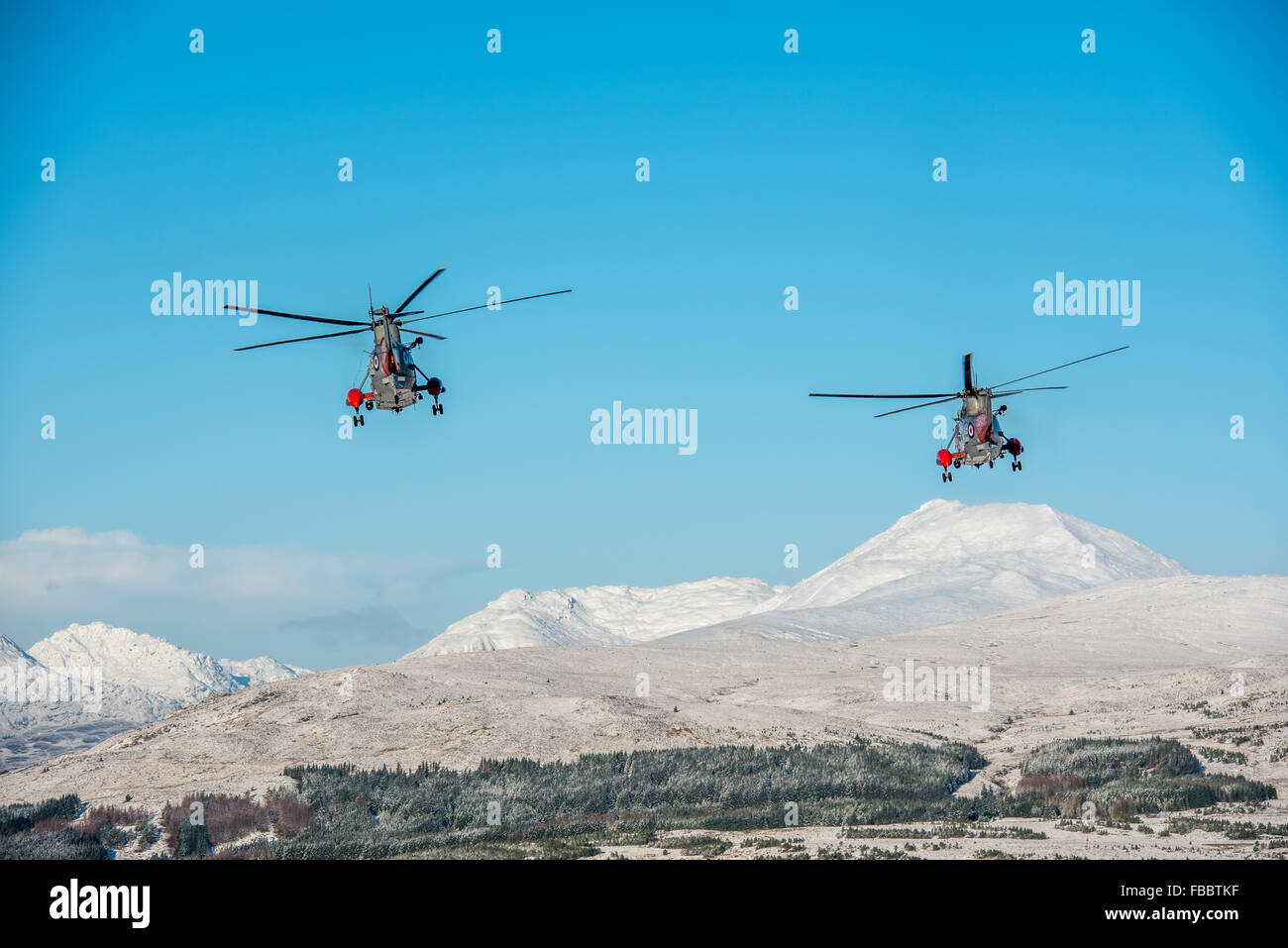 Two sea king helicopters from HMS Gannet in Prestwick flying near Ben Lomond (hill on RHS of image) on a winter - Stock Image
