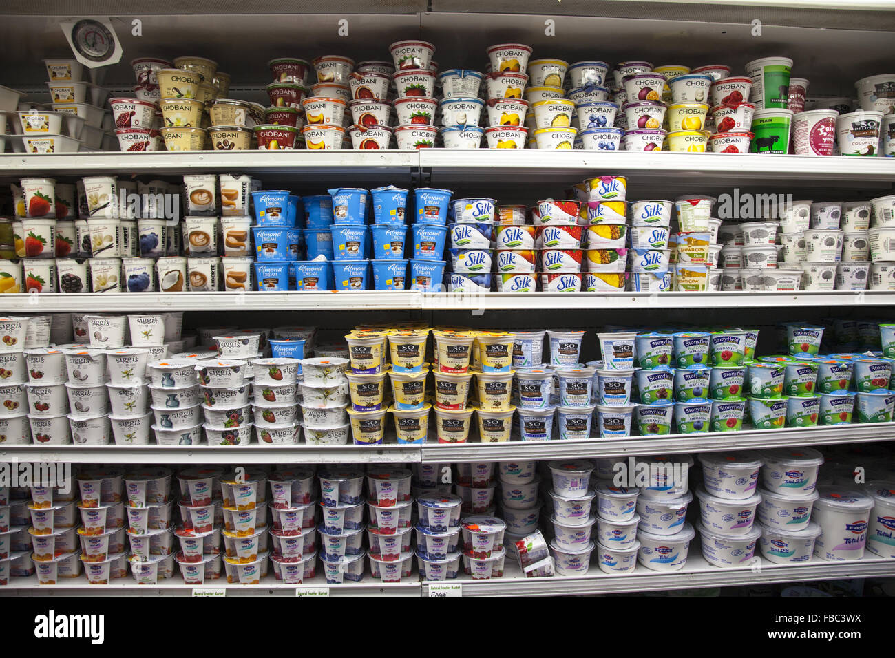 Yogurt and non-dairy substitutes are very popular and fill a section at a healthfood store in Brooklyn, NY. - Stock Image