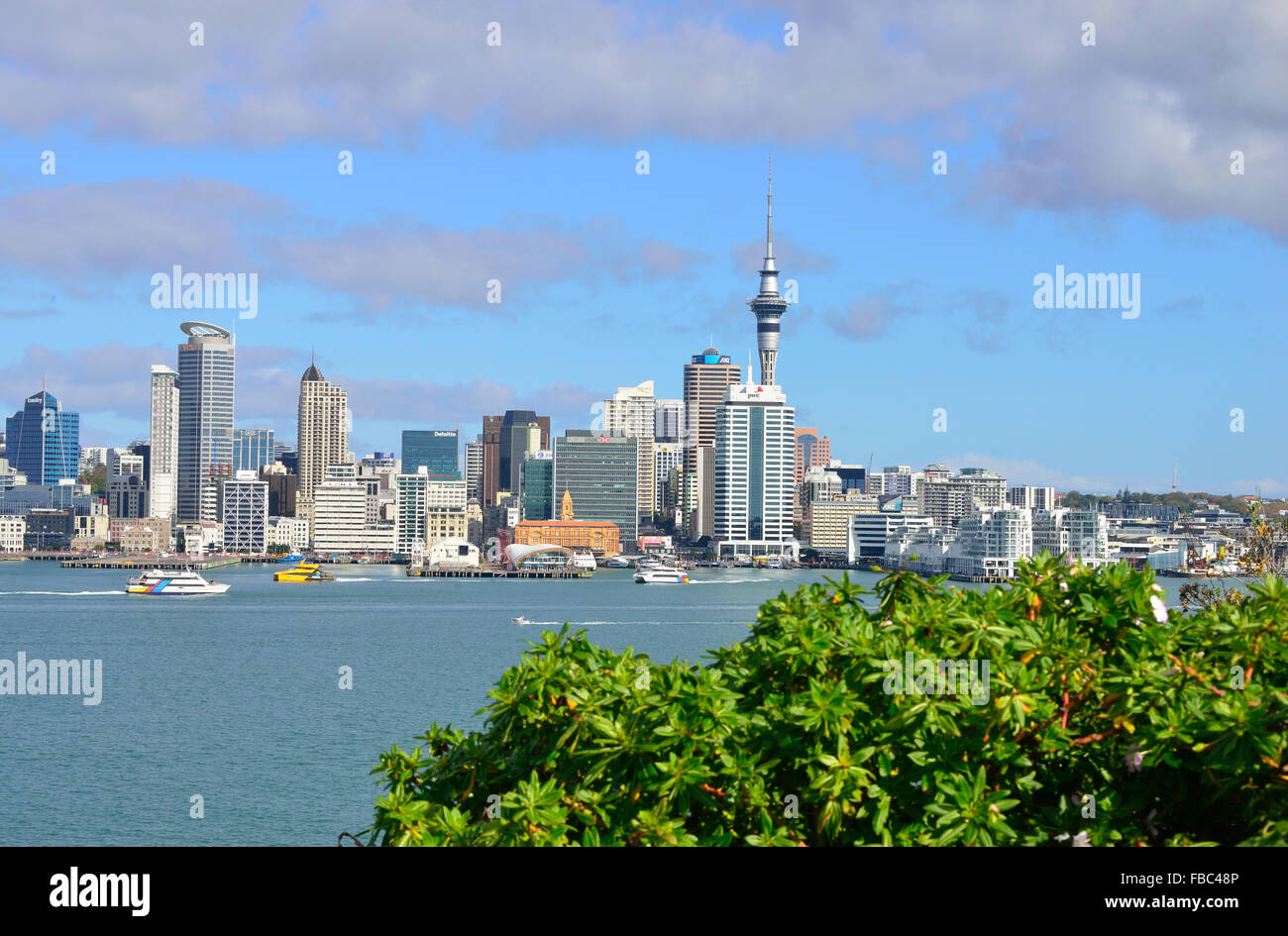 Auckland City New Zealand , the iconic view from the north shore side of the harbour at Queenspoint Devon point - Stock Image