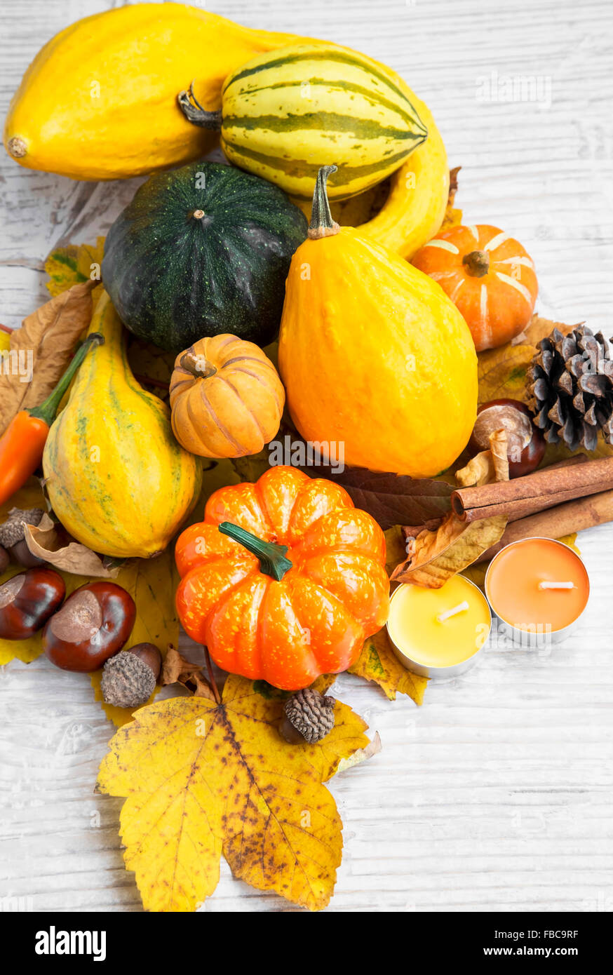 Autumn Pumpkins Assortment with Autumn Leaves, Chestnuts,Cinnamon and Acorns - Stock Image