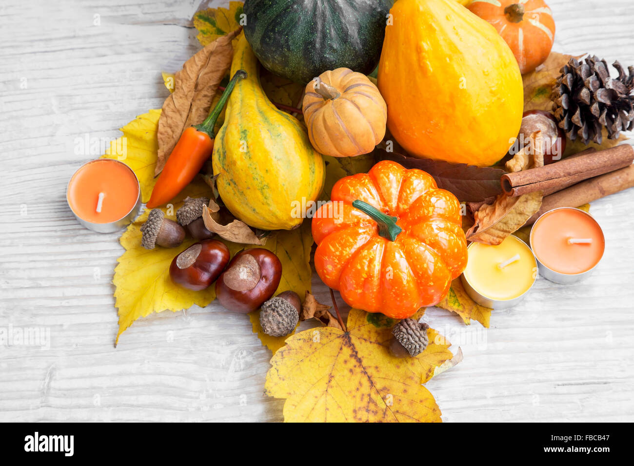 Autumn Decorations with Pumpkins, Dried Leaves, Chestnuts and Acorns on Painted Wood - Stock Image