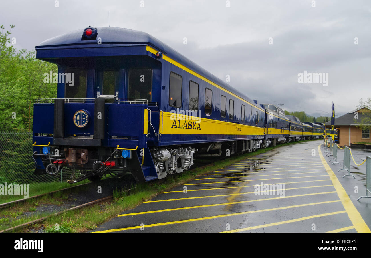 Alaska Railroad ARR passenger train in yellow and blue livery on an overcast day, seen from end of train, at Seward - Stock Image