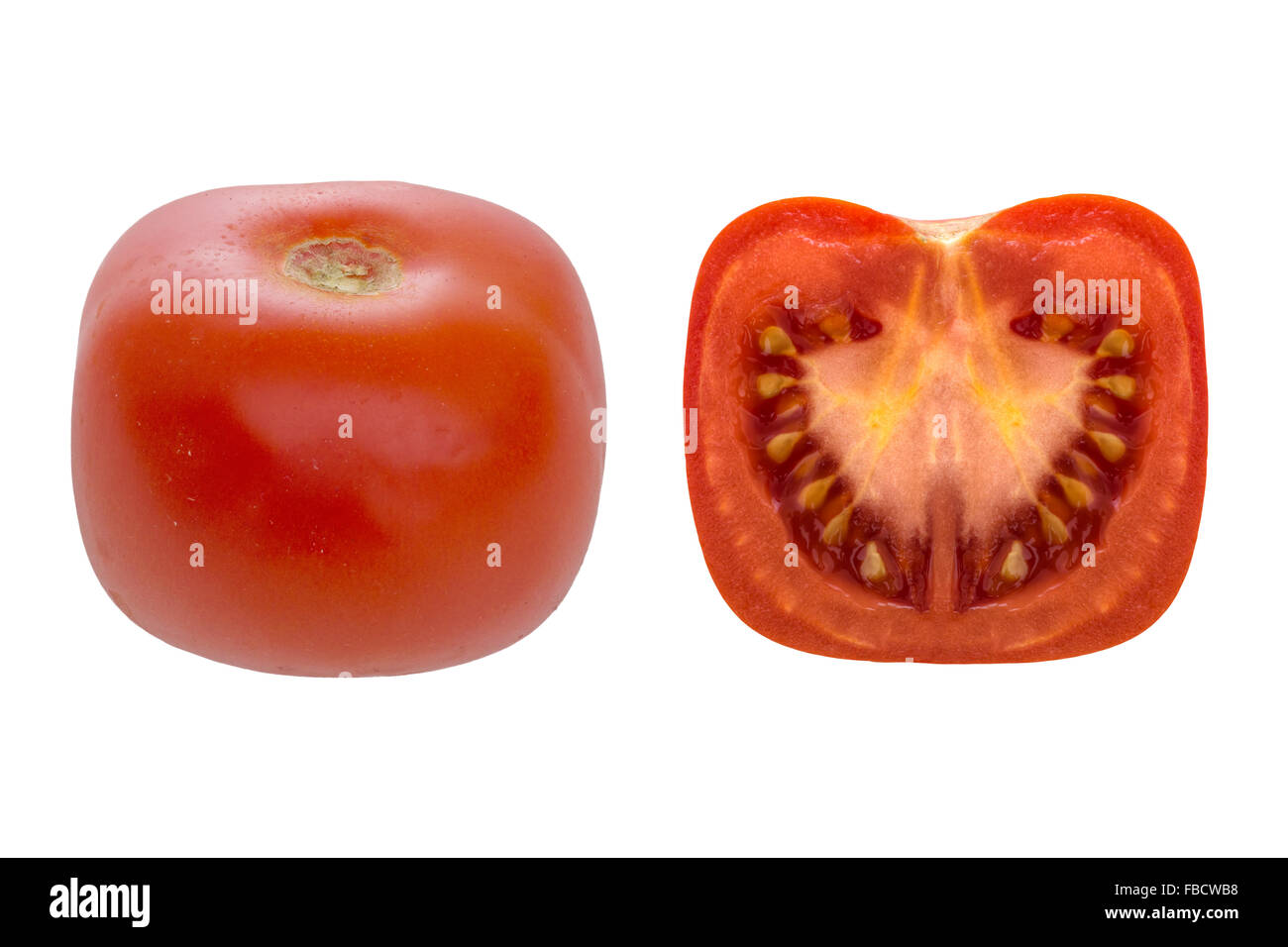 Square tomato. Genetically modified food. Isolated on white. - Stock Image