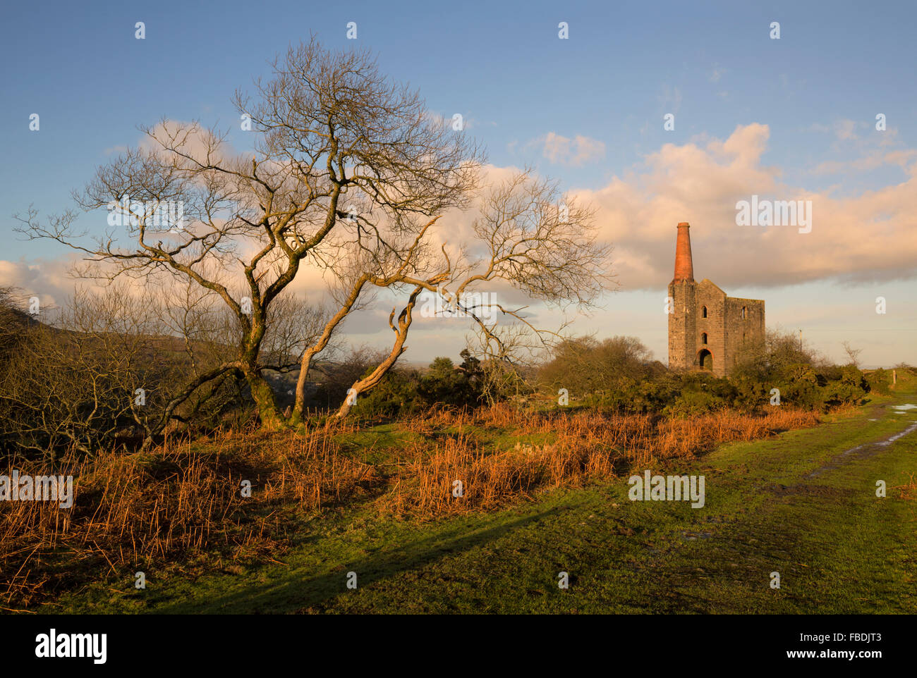 Warm evening light over the Prince of Wales Engine House in East Cornwall - Stock Image